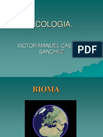 presentacic3b3n-biomas