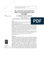 The External Environment Effect on Management and Strategy