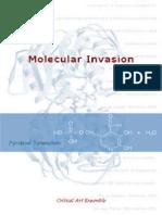 Critical_Art_Ensemble_The_Molecular_Invasion.pdf