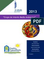 Grupo de Interés Medio Ambiental 2013 C.C.A.P (Rosa Núñez Bravo)