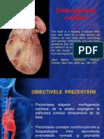 4. Embriogeneza cardiaca(1)