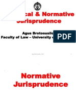 Normative & Analytical_Jurisprudence