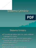 sistemaurinrio-130814140043-phpapp01