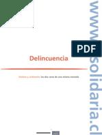 libroriscl_delincuencia