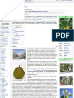 More About Pear