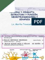 Clase 3. Neurona