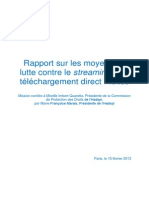 Rapport Streaming 2013