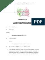 Agenda Del Caso