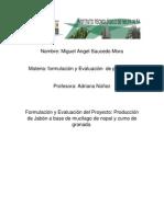 Trabajo de Evaluacion y Formulacion de Proyectos Lunes