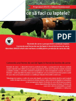 Program Angus x Baltata Romaneasca