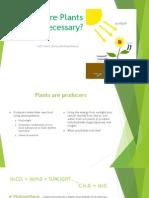 are plants necessary