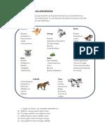 Guías comprensión lectora.docx