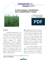Manejo de Centrosema macrocarpum em Roraima
