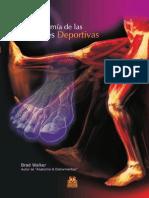 Anatomia Lesiones Deportivas