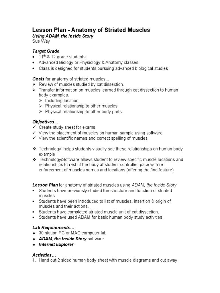 Muscle Anatomy | Human Body | Muscle