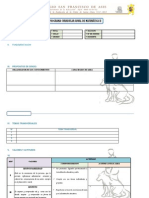 Modelo de Plan Anual 2013