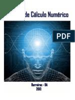 Apostila de Cálculo Numérico Pronta