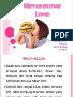 Lipid Kel.iv