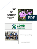 Informe Gestion i Semestre 2013