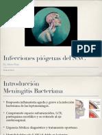 01 Meningitis Bacteriana Dr. Rojo