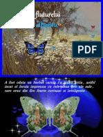 3417_Povestea fluturelui albastru