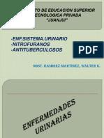 12ss Enf.sistema.urinario Nitrofuranos Antituberculosos