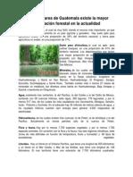 En qué lugares de Guatemala existe la mayor explotación forestal en la actualidad.docx