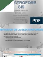 Electroforesis Final