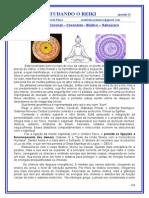 REIKI EM UMA VISÃO HOLISTICA - 2011 -2012 - 22_nd.doc