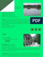 Ecosistem acvatic - Lacul