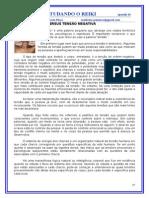 REIKI EM UMA VISÃO HOLISTICA - 2011 -2012 - 16_nd.doc
