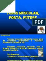 4 Tonus Fortza