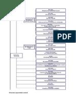 Structura Aparatului Central Vamal