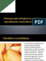 Doenças que atingem os sistemas reprodutores