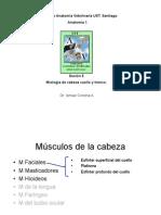 005 Miologia Cab,Cue,Tronco-PDF