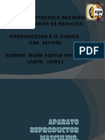 semiologadelaparatoreproductormasculino-121126230244-phpapp01