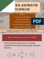 Senyawa Aromatik Polisiklik Kel 2