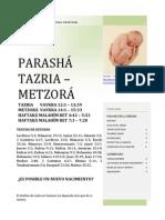 parasha_tazria_metzora_5772