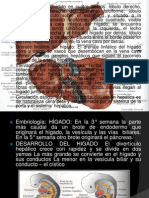 Cirrosis Hepatica 2 a3 Victor
