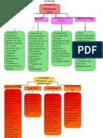 Plan de Trabajo Distintas Dignidades (1)