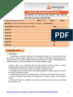 Roteiro para aula pratica Controle Metrológico (Goniômetro e Traçador de altura)
