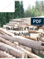 Chemistry of Kraft Pulp
