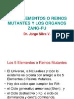 Cinco Reynos Mutantes Y_zang-fu