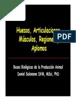 C2 HUESOS (1)