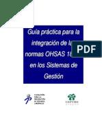 Guia Practica 2007 OHSAS
