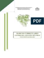 Marcos Curriculares CAM