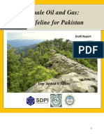 Shale Gas Viability and Prospects for Pakistan
