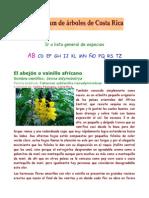 arboles 2