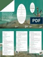 literatura_programa.pdf