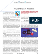 Fundamentals of Holiday Detection-Test